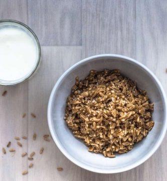 Recetas con leche de avena